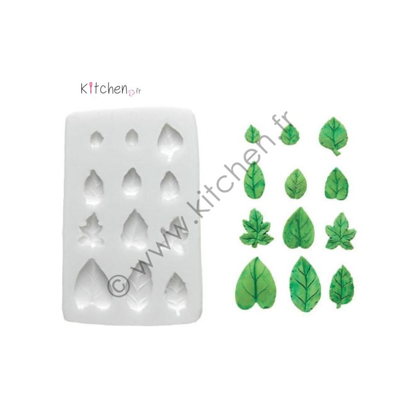 Moule silicone feuilles